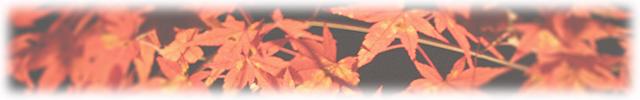 autumn-leaves01