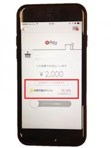 QRを読み取ってあとはボタンをスライドすれば支払いが完了する。ポイントで支払うことも可能だ